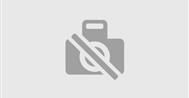 blühauf Blumenboxen mit Versand