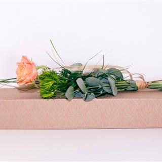 """Blumenbox Amsterdam """"Rose Luise"""" - Für Ihren Wohlfühlgarten"""