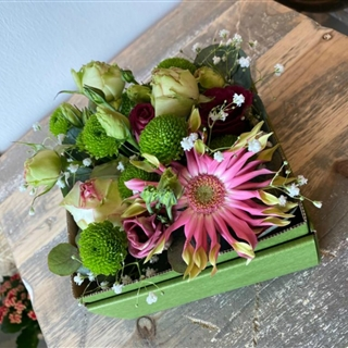Romantische Blüttenbox in der Baumschule Graz - Liebenswerte Blumenbox Graz Erblühender Sommer      Blumenbox Graz Abmessung ca. 15 x 15cm   Abbildung ähnlich je nach Verfügbarkeit und Jahreszeit.