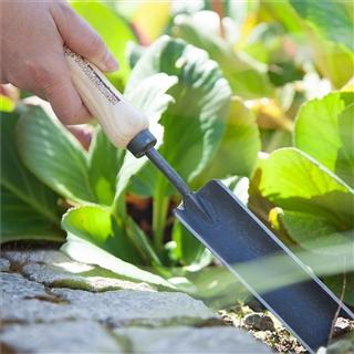 Pflanzkelle zum Eingraben von Pflanzen - In unserem Garten Onlineshop