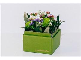 """Blumenbox Lieboch """"Saisonel"""" - Für Ihren Wohlfühlgarten"""