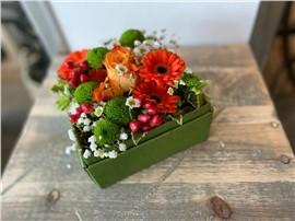 Romantische Blumenbox in Orange im Gartencenter Graz - Gartenplanung Steiermark