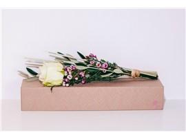 Rose mit Begleitung - In unserem Garten Onlineshop