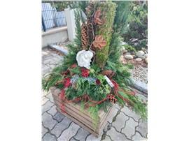 Symbolfoto - mit Engel im Gartencenter Graz - Gartenplanung Steiermark