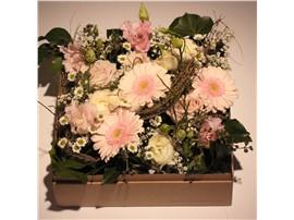 """Symbolfoto - Blumenbox Paris """"Blütentanz"""" - Für Ihren Wohlfühlgarten"""