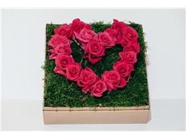 """Blumenbox Paris """"Herzerl"""" kaufen - Im Onlineshop für Garten"""