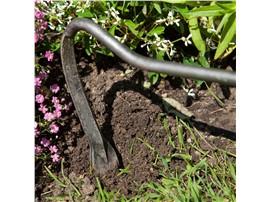 Symbolfoto - Cape Cod Weeder - Für Ihren Wohlfühlgarten