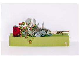 """Blumenbox Amsterdam """"Rote Rose"""" - In der Gärtnerei Kochauf bei Graz"""