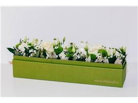 """Blumenbox Amsterdam """"Weiße Eleganz"""" - Für Ihren Wohlfühlgarten"""