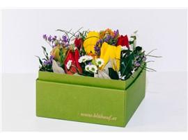 Bunte Frühlingsbox im Gartencenter Graz - Gartenplanung Steiermark