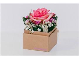 """Blumenbox Lieboch """"Rose Venedig"""" - Für Ihren Wohlfühlgarten"""