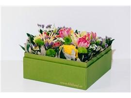 """Blumenbox Prag """"Frühlingsduft"""" - Für Ihren Wohlfühlgarten"""